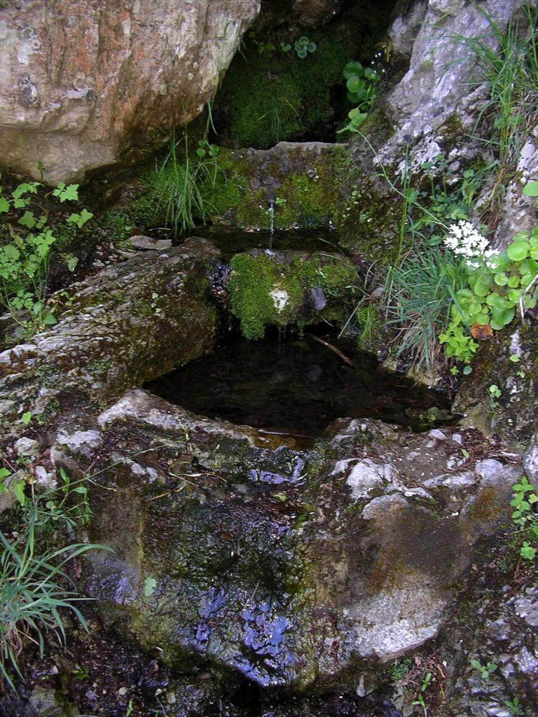 La sorgente dell'Acqua dei Porci (foto Maurizio Cuomo)