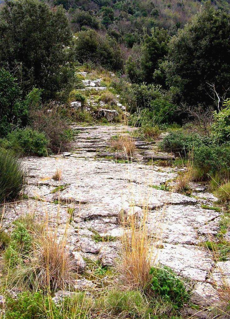 Terrazzamento calcareo (foto Maurizio Cuomo)