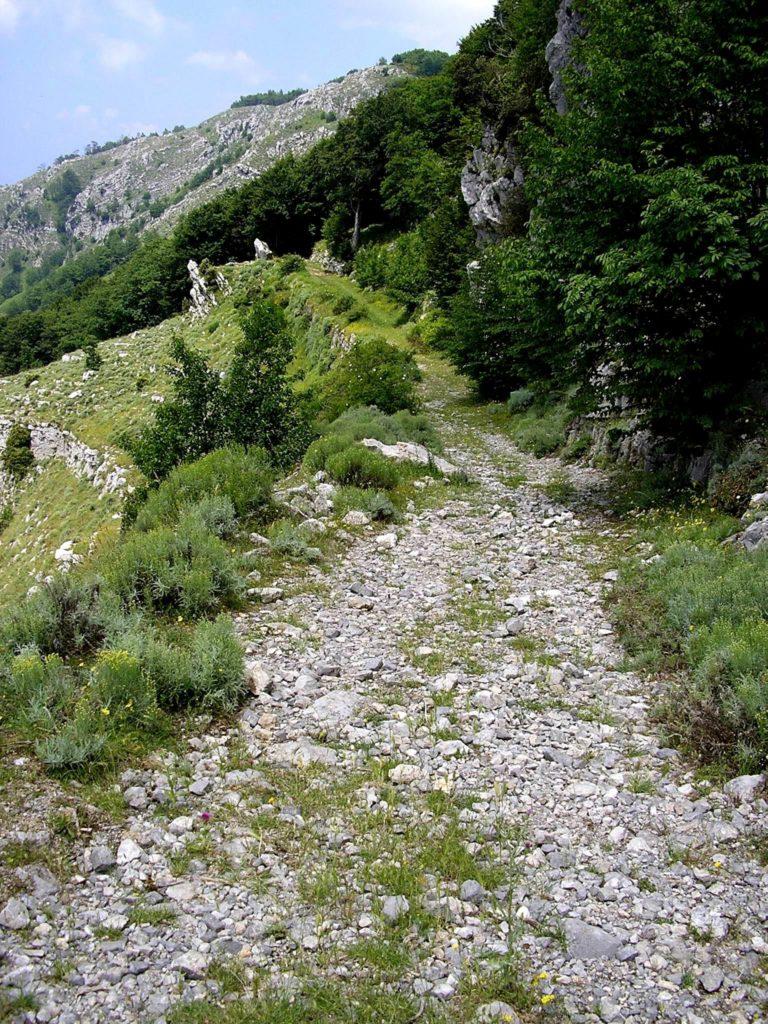 Un tratto pietroso del percorso (foto Maurizio Cuomo)