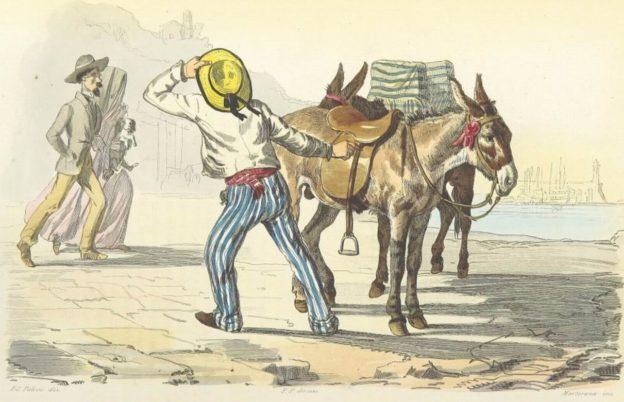 Boucard (1853) il ciucciaro