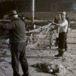 Anni '60 - Pescatori stabiesi sulla banchina prospiciente l'hotel Montil (foto gentilmente concessa dalla sig.ra Lidia Bifulco)