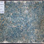 Skissebok fra Italia-reisen, 1820. 212 x 280 mm