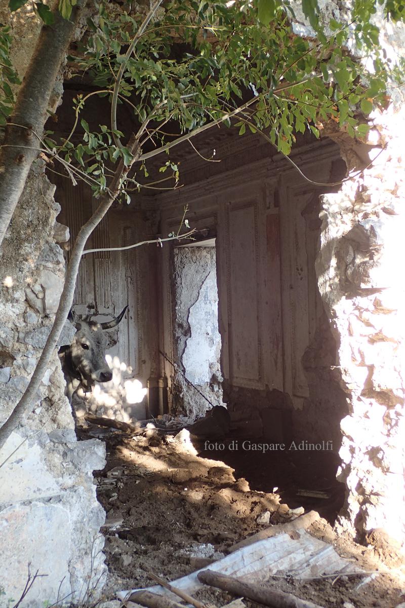 San Raffaele Arcangelo: la stalla