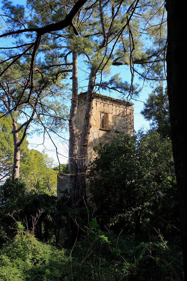 torre colombaia